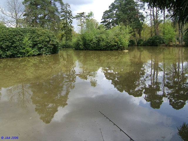 Turfcroft Pond, Burley