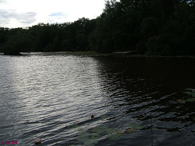 Breach Pond
