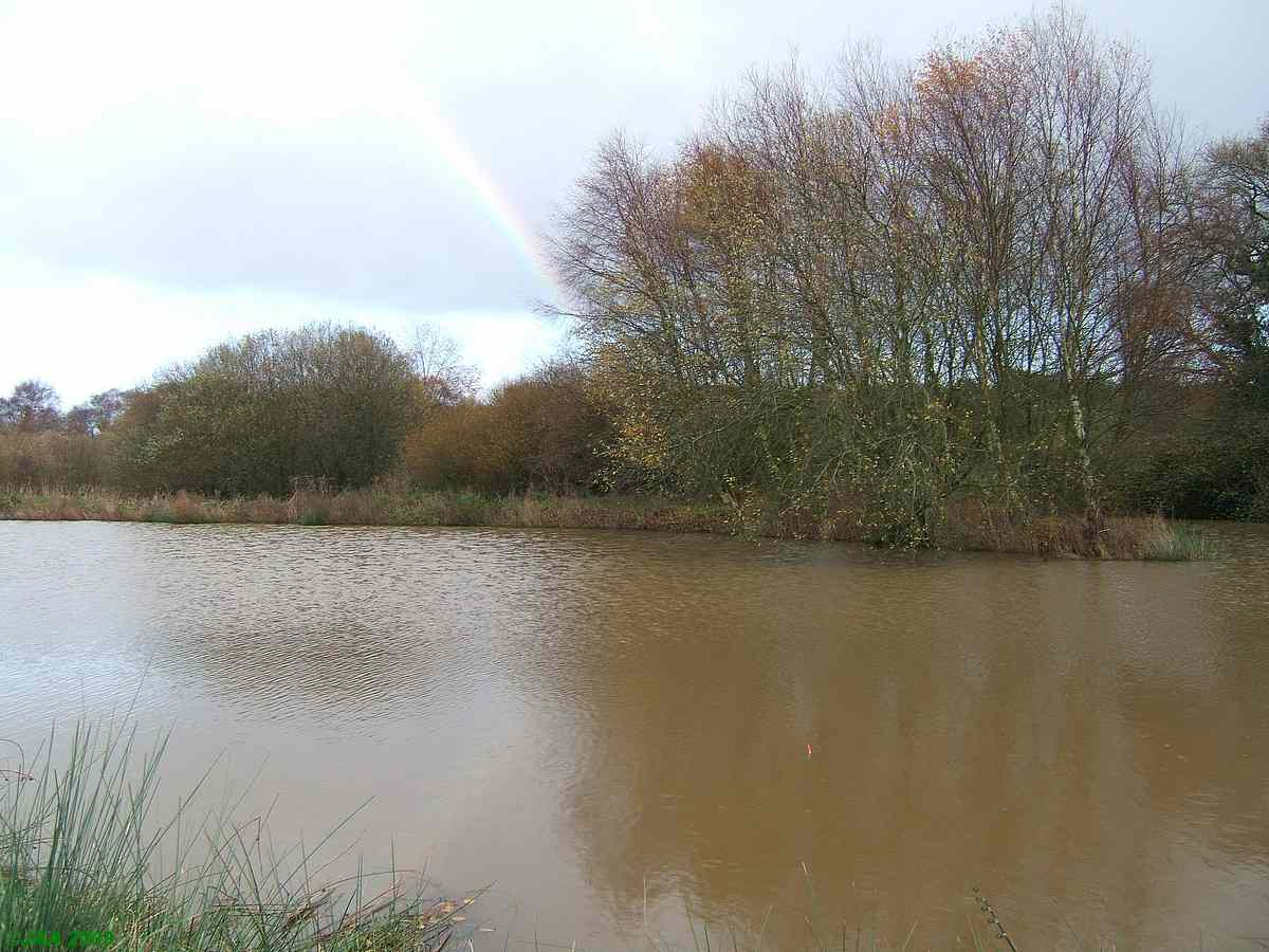 Pitmans Pond, Wytch Farm, whatever...