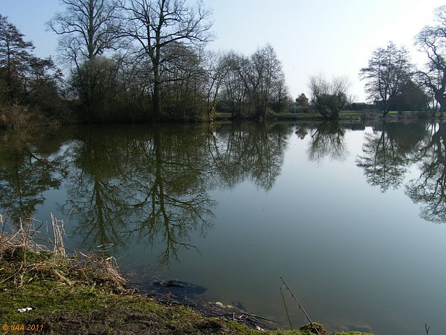 Barton's Court Lake
