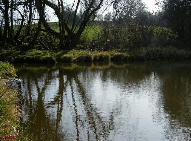 The Upper Saxon Pond