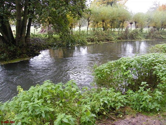 The River Kennet, Barton's Court