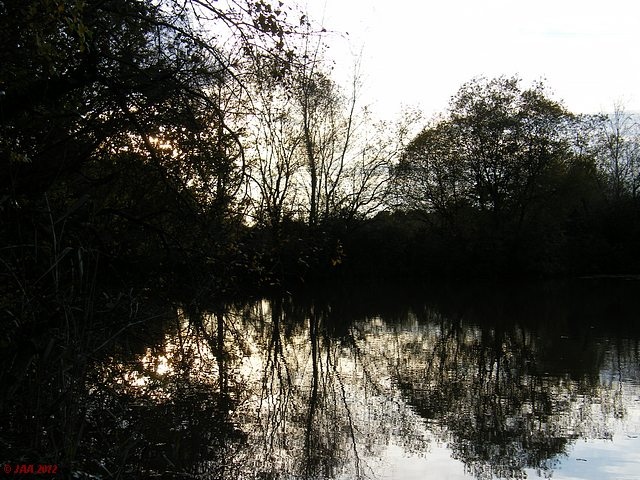 Tranquil Lake, Kingsbridge
