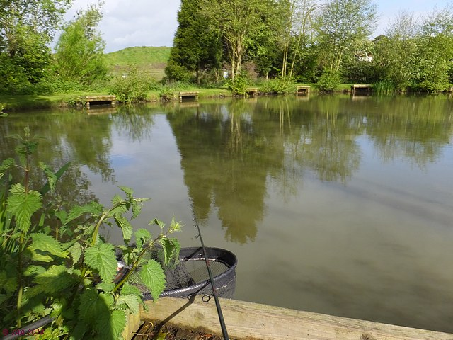 Alvechurch Fishery