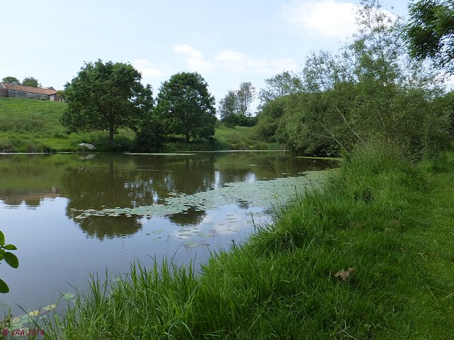 Washingpool Farm