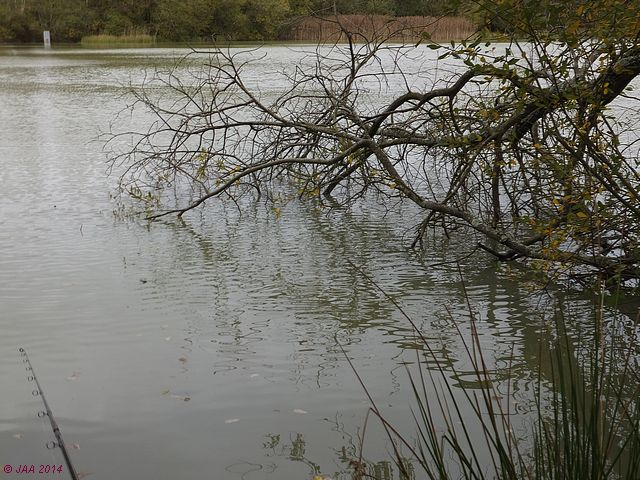 Heath Lake
