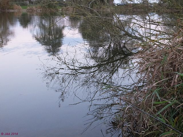 Bartons Court Lake