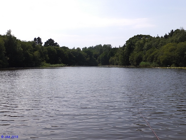 Wainsford Lake